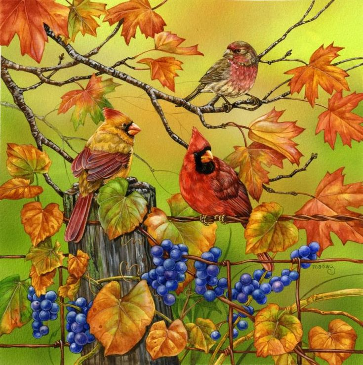 113 best images about Jane Maday on Pinterest | Cute ... |Fall Bird Paintings
