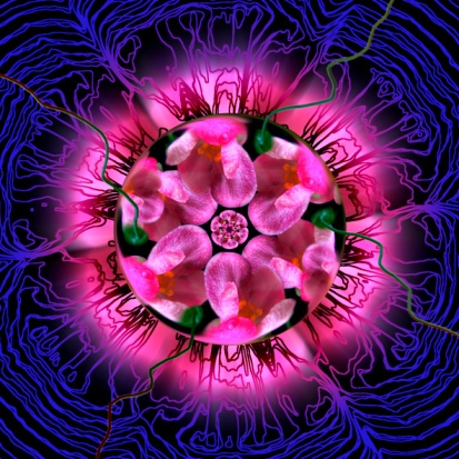 I think this pink and purple Mandala is so pretty.