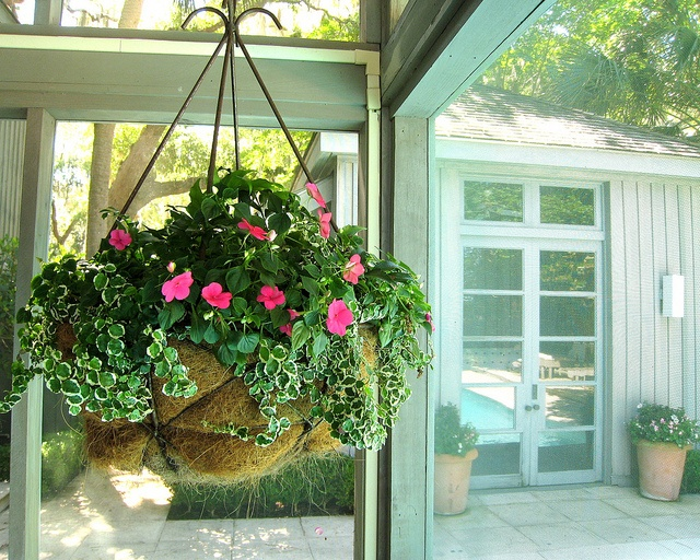 Screen Porch Hanging Basket Gardening Containers And