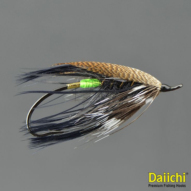88 best images about trout ladder steelhead flies on for Salon fly