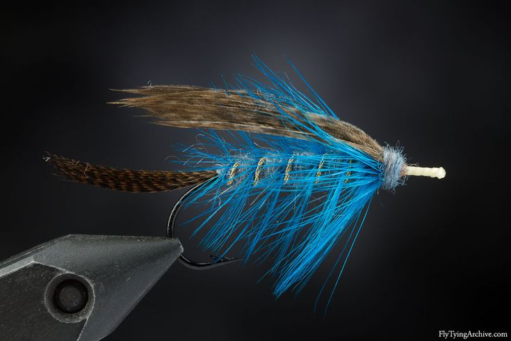 313 best images about lohiperhot salmon flyes on for Best time to fish today