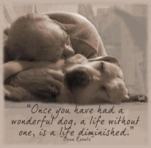 """Once you have had a wonderful dog, a life without one, is a life diminished."" I love my dog!"