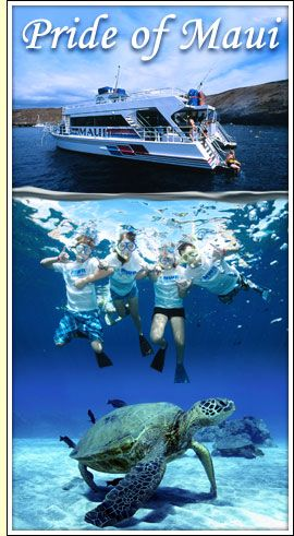 Maui Snorkeling -- best places to go