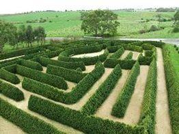 Mintaro Garden Maze, Mintaro, Clare Valley, South Australia