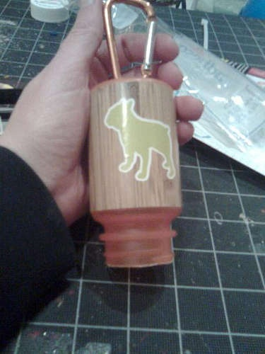 Dog Poop Bag Holder from Used Prescription Bottle! I made one and used decorative duct tape for the outside of the bottle.