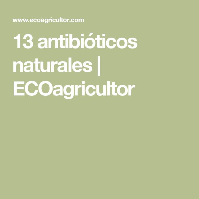 13 antibióticos naturales | ECOagricultor