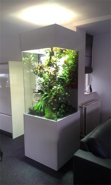 Clean white stand setup
