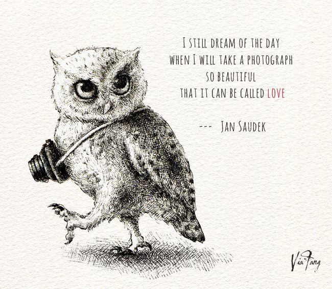 Днем, картинки с надписями про сову