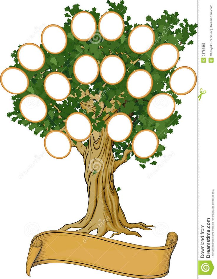 108 best дерево рода images on Pinterest Family tree chart - blank family tree template
