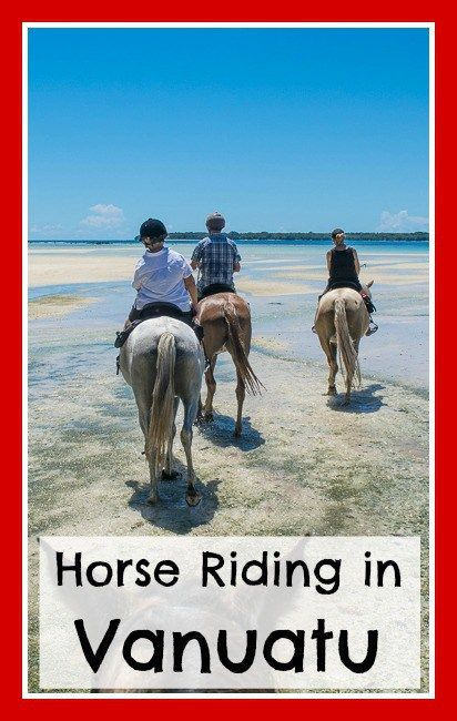 Horse Riding in Vanuatu.  Click the image above for a run down of the unique horse trail rides run by Santo Horse Adventures on the island of Espiritu Santo in Vanuatu.