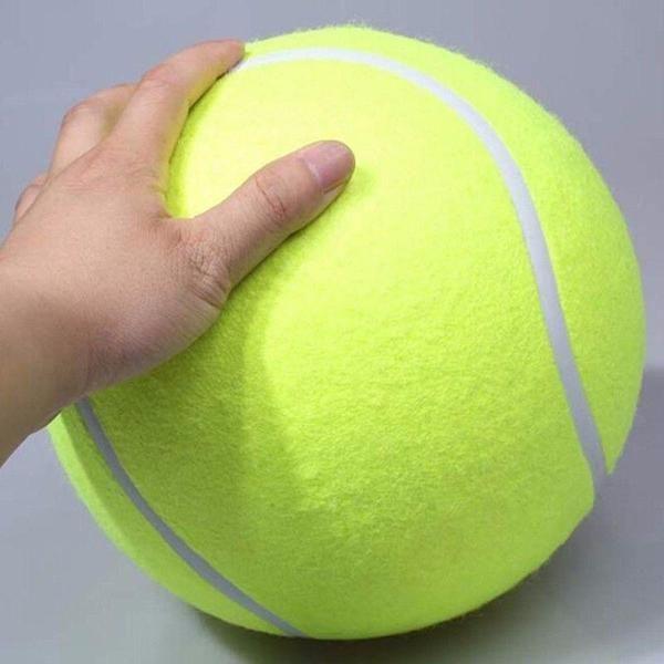Every Puppy S Dream Come True The World S Most Massive Tennis