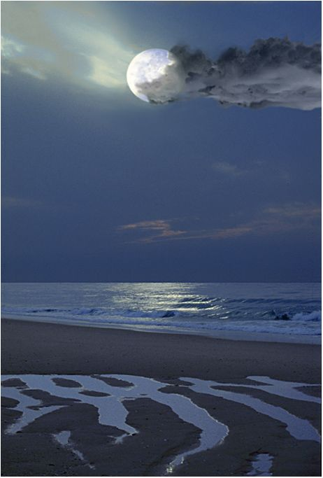 ✯ the moon and the sea