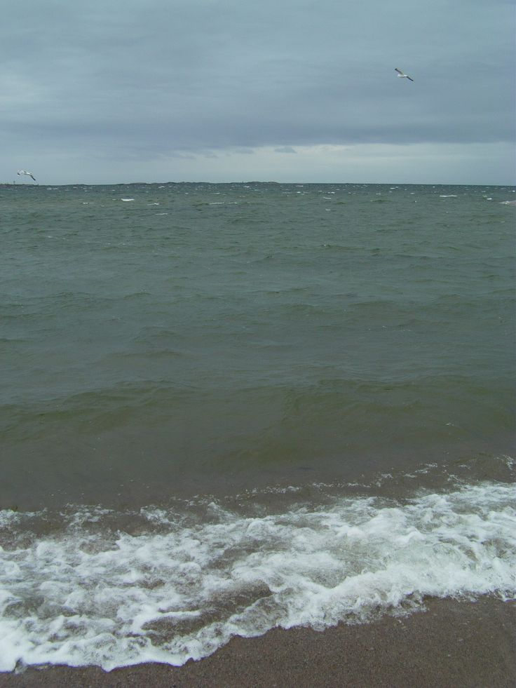 #sea platinepearl #hanko #hangö #finnish archipelago #platinepearl #summer