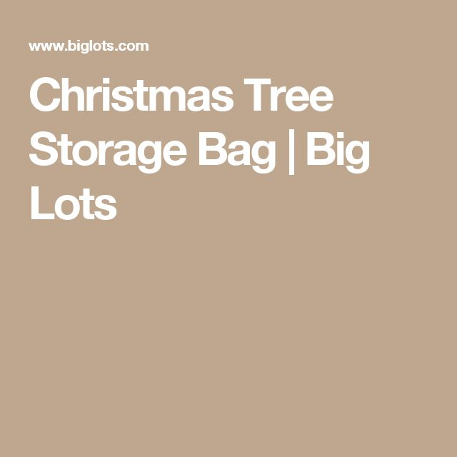 Christmas Tree Storage Bag | Big Lots