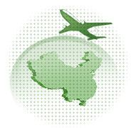 China Flights: Schedule, Discount Cheap Air Tickets