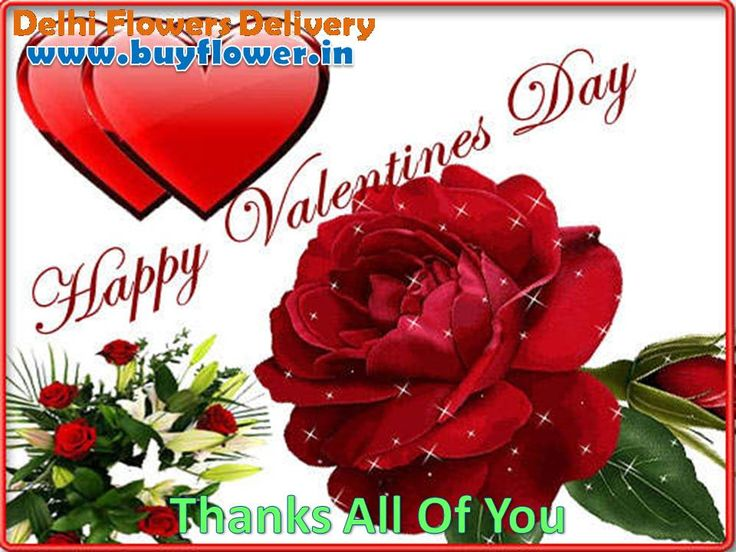 Happy Valentines Day 2016 Send #Flowers, #Sweets, #DryFruits, #Toys To Your Family And Lovers By http://www.buyflower.in
