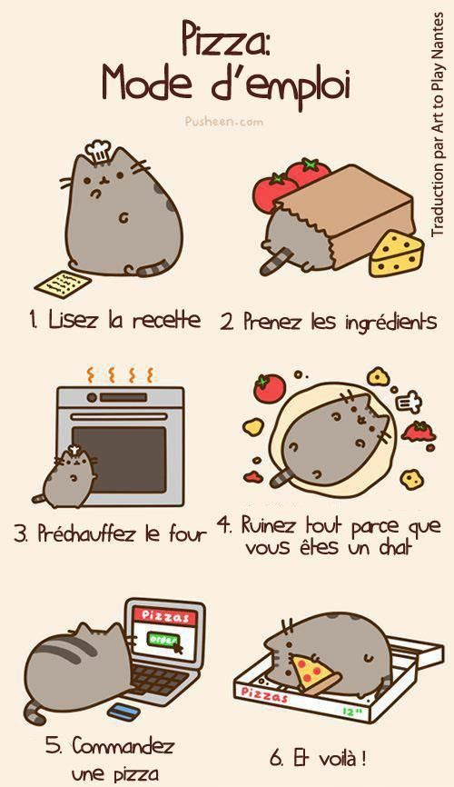 How to Do a Pizza 1. Read the recipe. 2. Get the ingredients. 3. Preheat the oven. 4. Ruin everything because you are a cat. 5. Order a pizza. 6. And there you go!