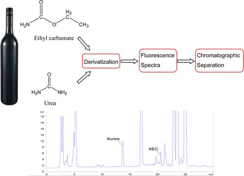 Abstract Image Simultaneous Determination of Ethyl Carbamate and Urea in Alcoholic Beverages by High-Performance Liquid Chromatography Coupled with Fluorescence Detection  Jian Zhang†, Guoxin Liu†, Ying Zhang‡, Qiang Gao†, Depei Wang† and Hao Liu† †Key Laboratory of Industrial Fermentation Microbiology (Tianjin University of Science and Technology), Ministry of Education, Tianjin 300457, P. R. China ‡Key Laboratory of Food Nutrition and Safety (Tianjin University of Science and Technology)…