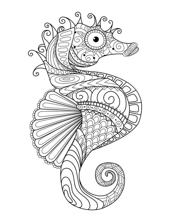 48 best Animal zentangle coloring pages images on Pinterest