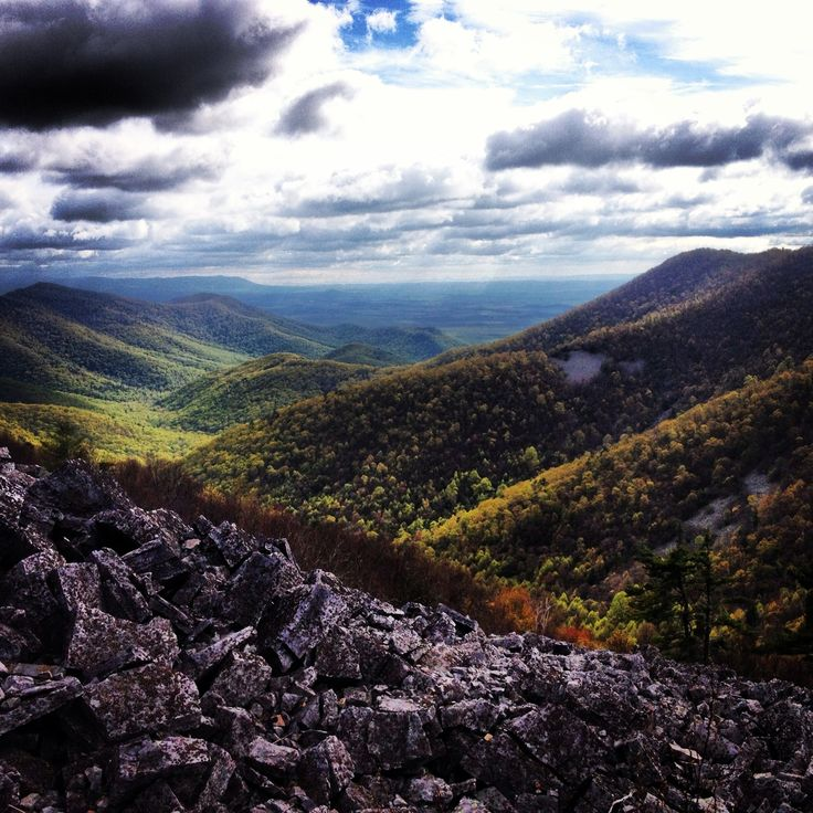 Best 25+ Shenandoah National Park Ideas On Pinterest