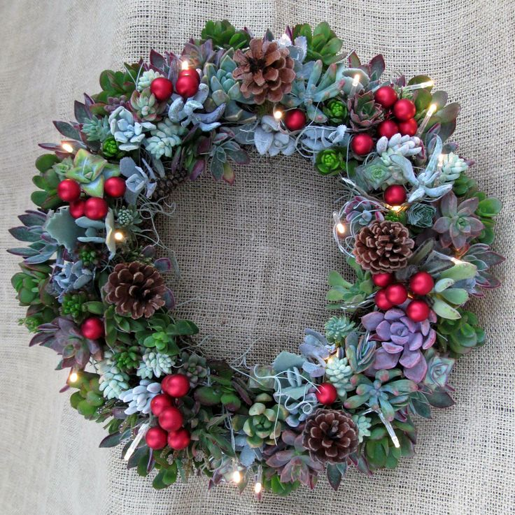 Lovely Large 16 Inch Living Succulent Wreath With Lights