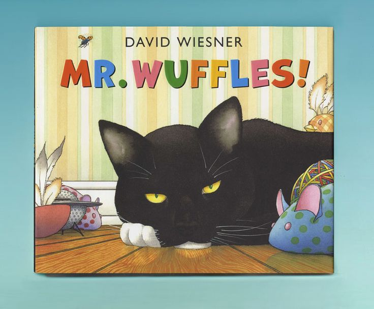PERSPECTIVE: Mr Wuffles by David Wiesner
