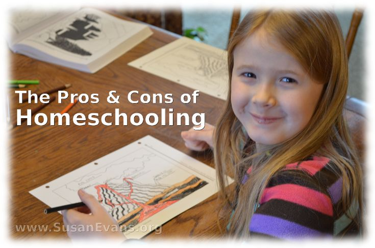 the disadvantages of homeschooling Homeschooling is the education of children at home by parents who have numerous reasons for it for example, better test results, religious reasons, and living in isolated rural areas.
