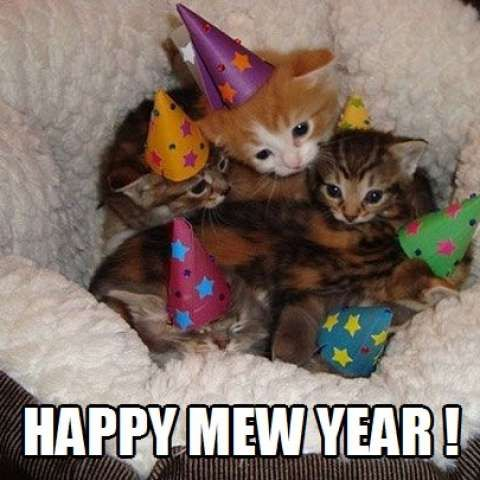 <p>Wishing you the very best for 2015!<br /><br /></p>
