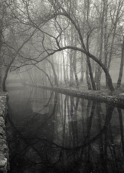 """The Little Bridge"" by Jose Viegas  via whiteless.tumblr.com/"