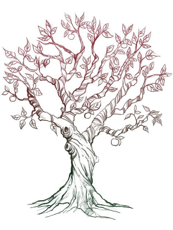 Fruit Tree Drawing With Roots Wwwimgarcadecom Online
