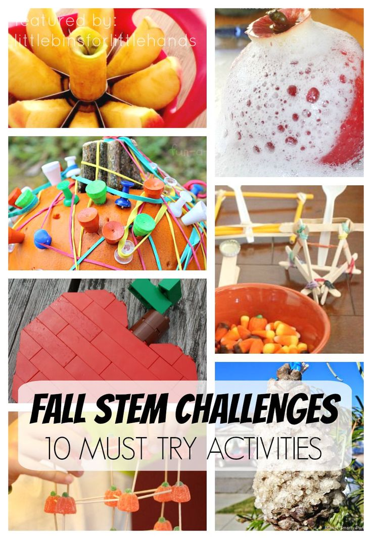 10 Must Try Fall Science Activities and STEM Challenges for Kids