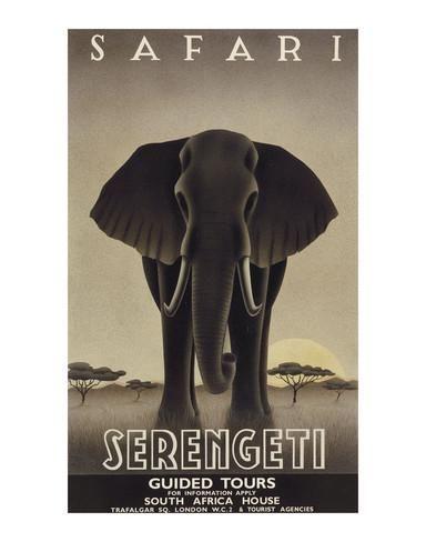 Parc national du Serengeti Affiches par Steve Forney sur AllPosters.fr