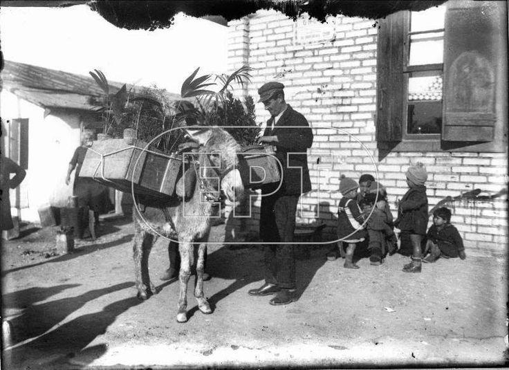 Αθήνα 1926 , πλανόδιος ανθοπώλης