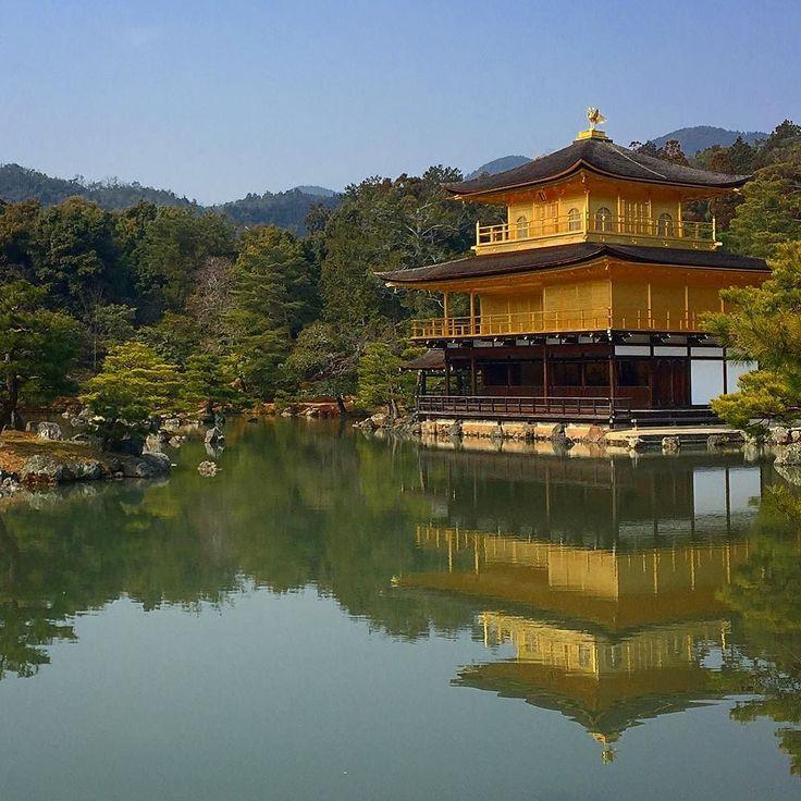 Золотой храм сегодня! #кинкакудзи #Киото  #японскийсад #Япония #этоЯпония #дневник #Kyoto #japan #kinkakuji
