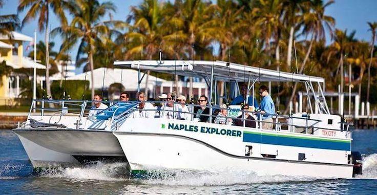 Dolphin Pools Marco Island
