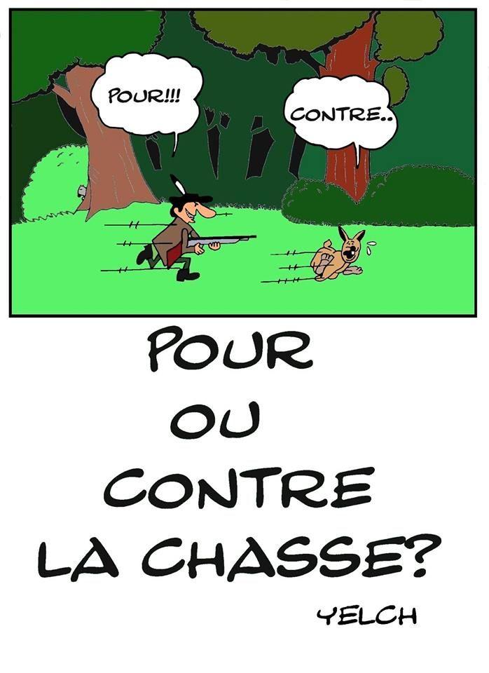 Image Par Josette Sur Chasse En 2020 Chasse Au Lapin Chasse Humour