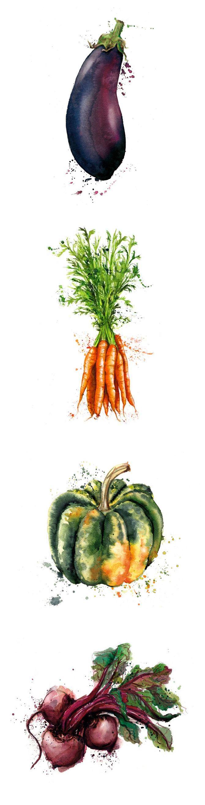 Vegetables illustration, drawing / Verdure, illustrazione, disegno - Art by Georgina Luck