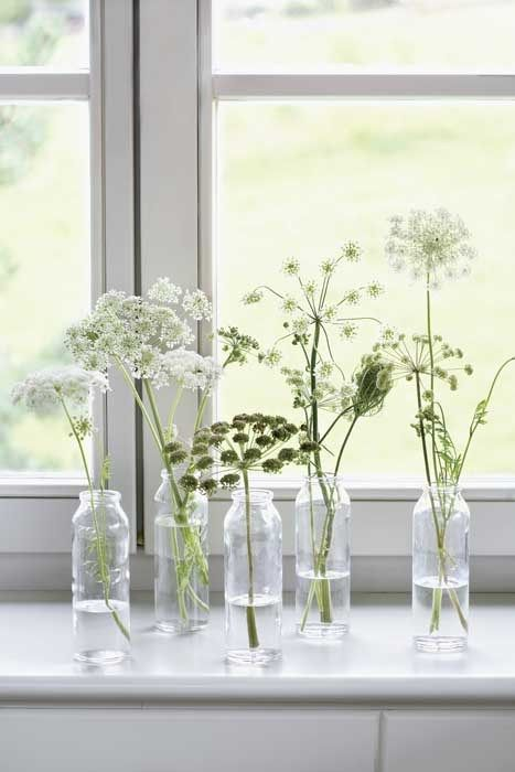 queen anne's lace in small bottles - planete-deco