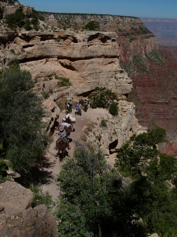Grand Canyon Pa Directions%0A Grand Canyon