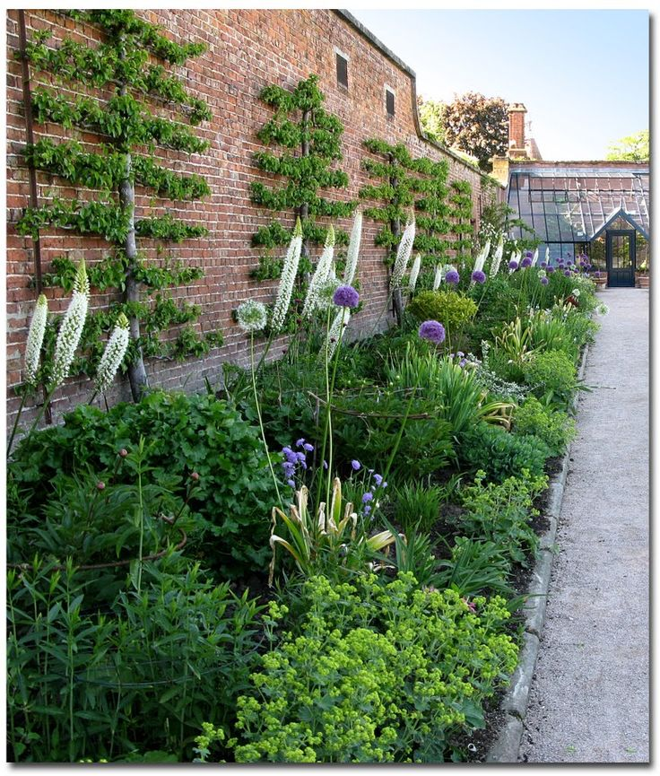 Edible Landscaping: Kitchen Garden | jardin potager, espalier, edible gardening, landscape design