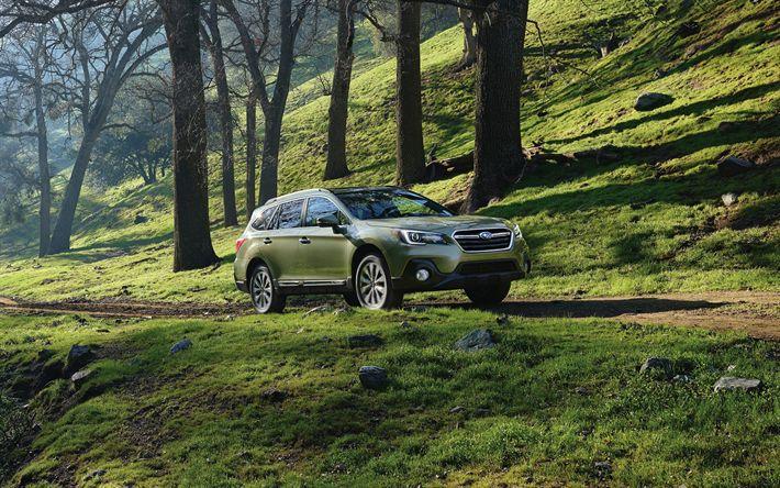 Scarica sfondi 4k, Subaru Outback, 2018 auto, Suv, fuoristrada, auto giapponesi, Subaru