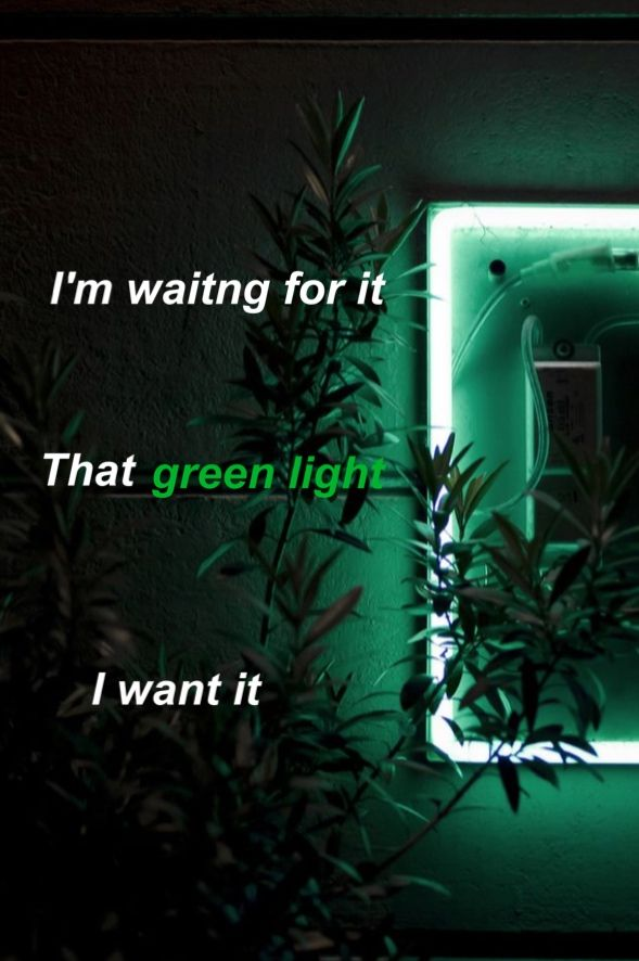 Green Light- Lorde Edit by: @fayz019 #lorde #lyricedits #greenlight
