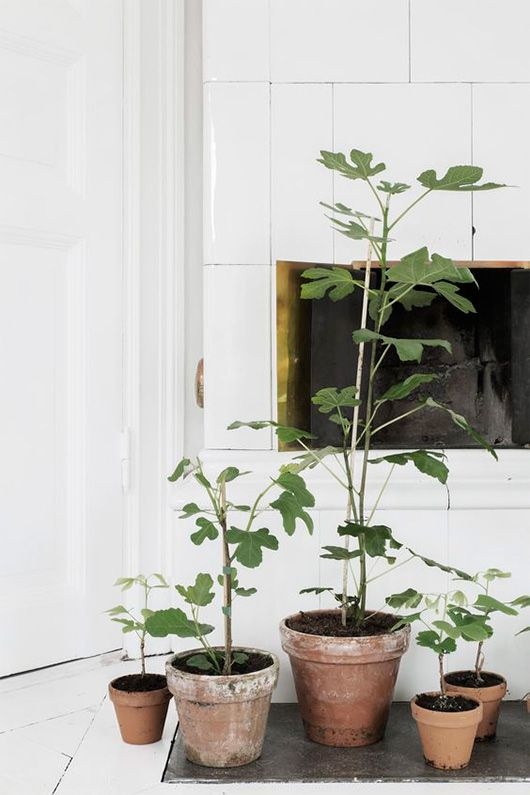 white tile fireplace and potted houseplants | minimal scandinavian style
