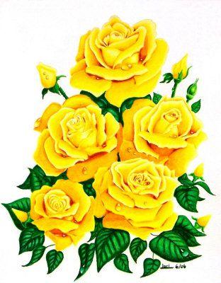 yellow roses rose drawing drawings raindrops flowers artistrising series rain drops prints