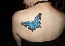 cat eyes tattoo designs - Bing Images - what a beautiful butterfly :)