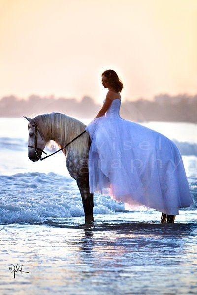 Horse and his bride going for a swim!