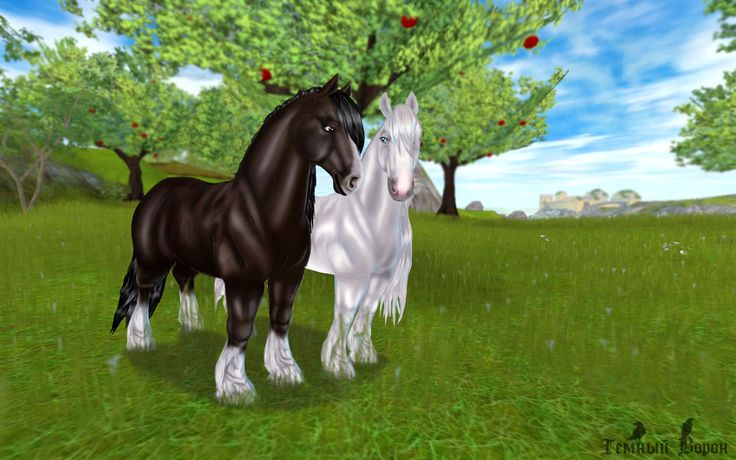 Star Stable Online Edit by Vecotone on DeviantArt