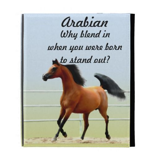 ==>Discount          	Arabian Horse iPad Folio Cases           	Arabian Horse iPad Folio Cases online after you search a lot for where to buyShopping          	Arabian Horse iPad Folio Cases Here a great deal...Cleck Hot Deals >>> http://www.zazzle.com/arabian_horse_ipad_folio_cases-222525711765100554?rf=238627982471231924&zbar=1&tc=terrest