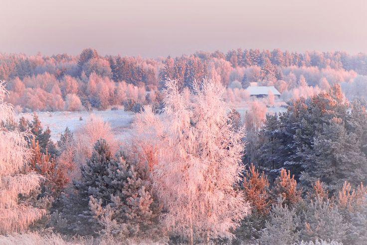 Lithuanian landscape - About - 24 :)