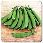 Organic Sugar Daddy Snap Pea- these are the sweetest!